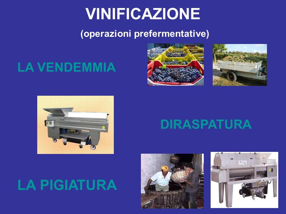 VINIFICAZIONE (operazioni prefermentative)
