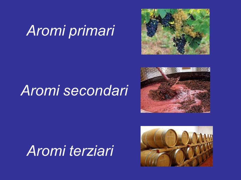 Aromi primari Aromi secondari Aromi terziari