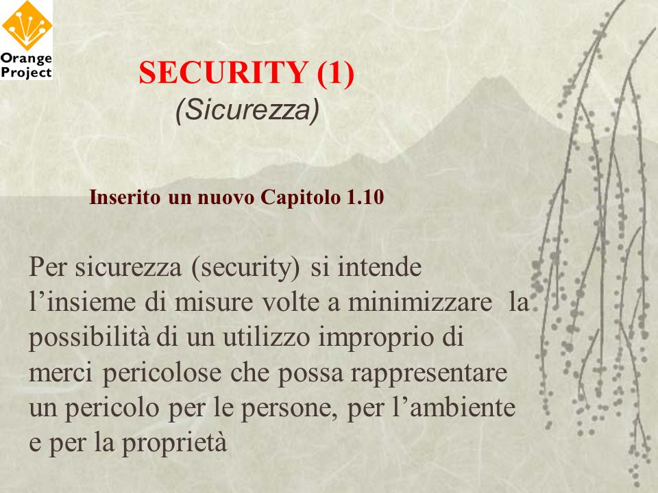 SECURITY (1) (Sicurezza)
