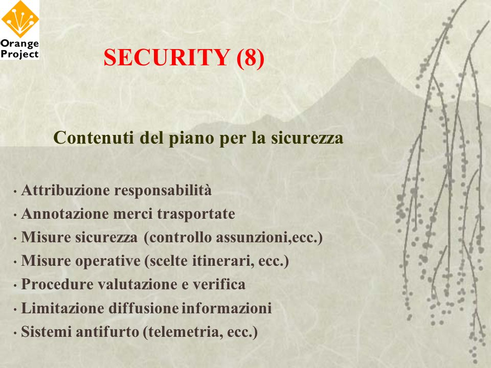 Contenuti del piano per la sicurezza