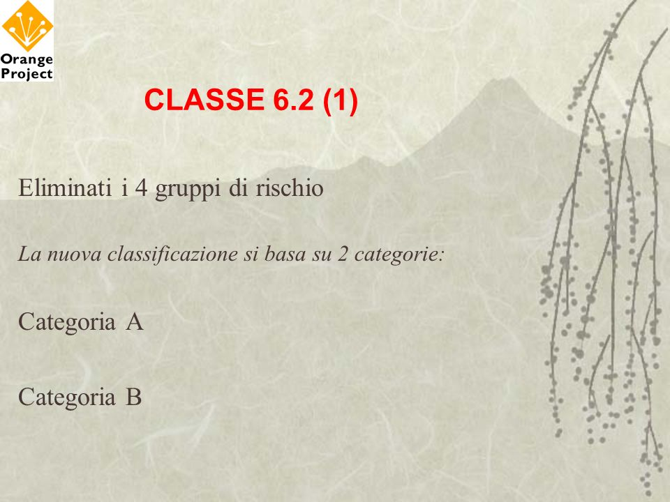CLASSE 6.2 (1) Eliminati i 4 gruppi di rischio Categoria A Categoria B