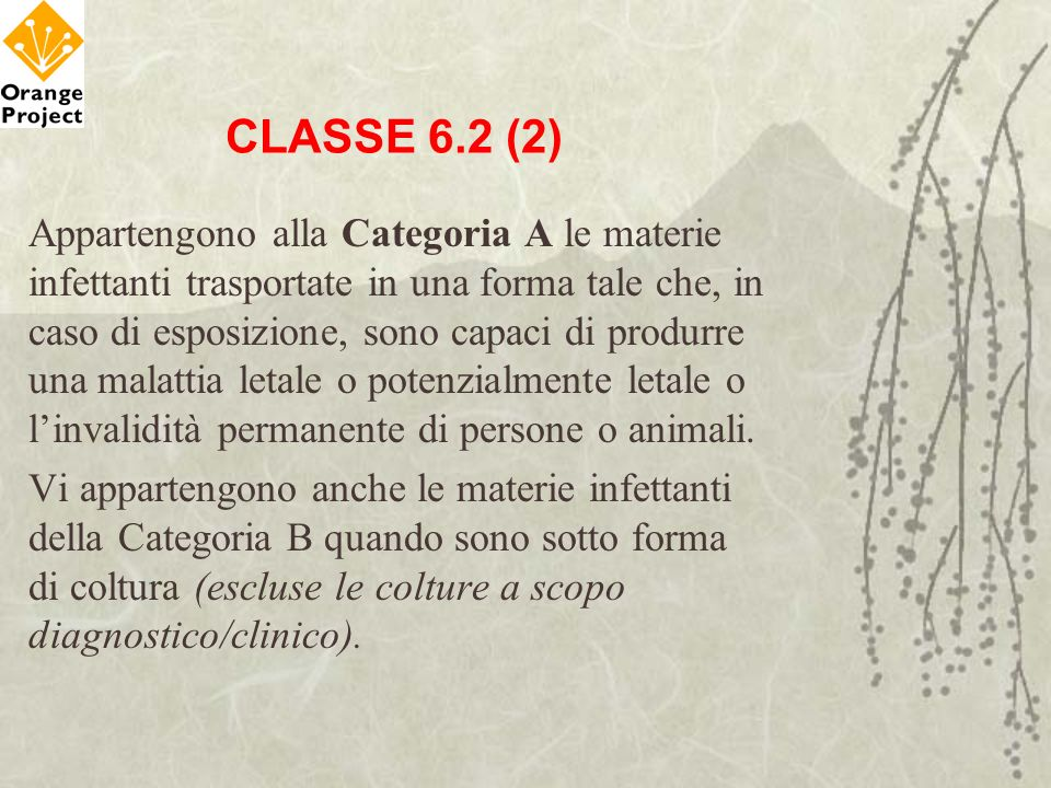 CLASSE 6.2 (2)