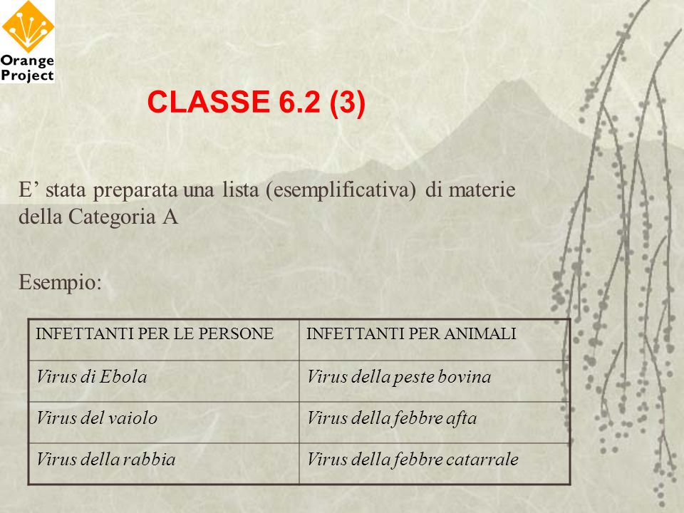 CLASSE 6.2 (3) E' stata preparata una lista (esemplificativa) di materie della Categoria A. Esempio: