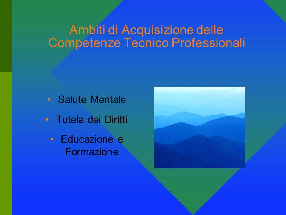 Ambiti di Acquisizione delle Competenze Tecnico Professionali