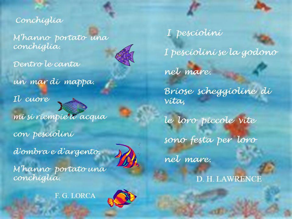 I pesciolini se la godono nel mare. Briose scheggioline di vita,