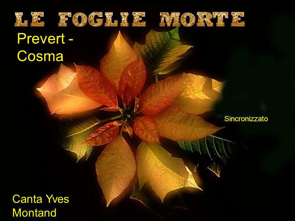 Prevert - Cosma Sincronizzato Canta Yves Montand