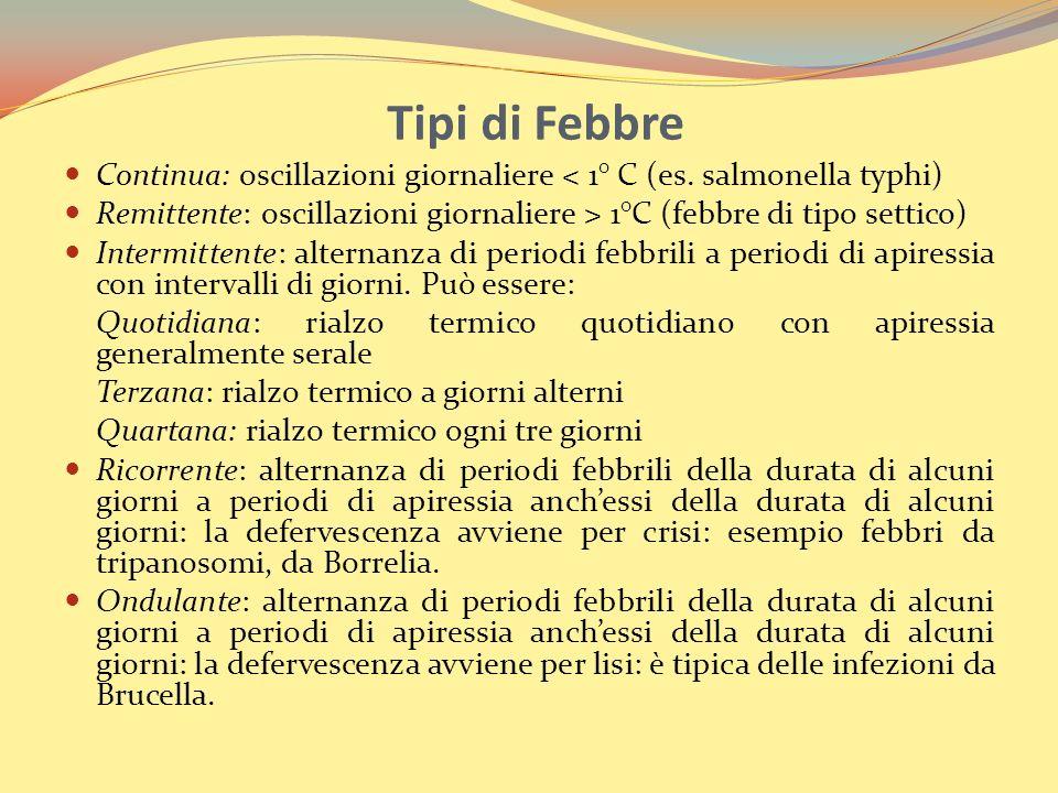 Tipi di Febbre Continua: oscillazioni giornaliere < 1° C (es. salmonella typhi) Remittente: oscillazioni giornaliere > 1°C (febbre di tipo settico)