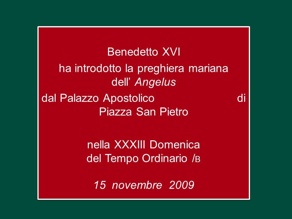 Benedetto XVI ha introdotto la preghiera mariana dell' Angelus dal Palazzo Apostolico di Piazza San Pietro nella XXXIII Domenica del Tempo Ordinario /B 15 novembre 2009