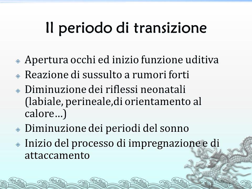 Il periodo di transizione