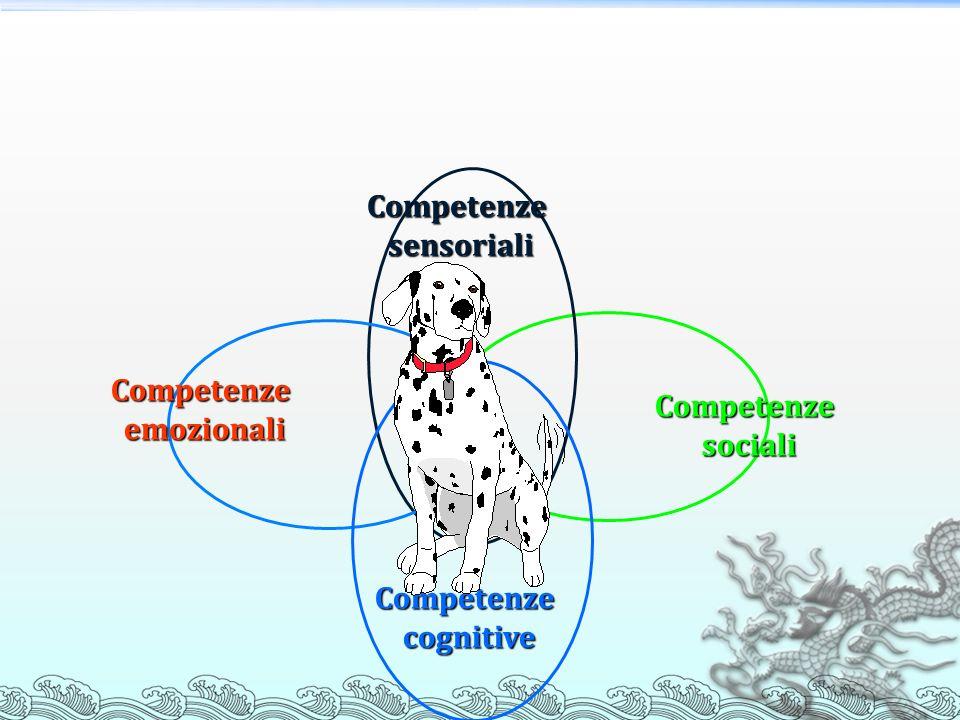 Competenze sensoriali Competenze sociali Competenze emozionali Competenze cognitive