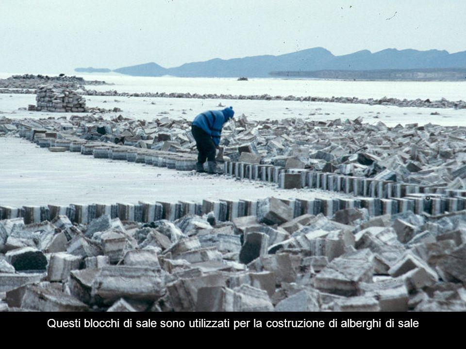 Questi blocchi di sale sono utilizzati per la costruzione di alberghi di sale