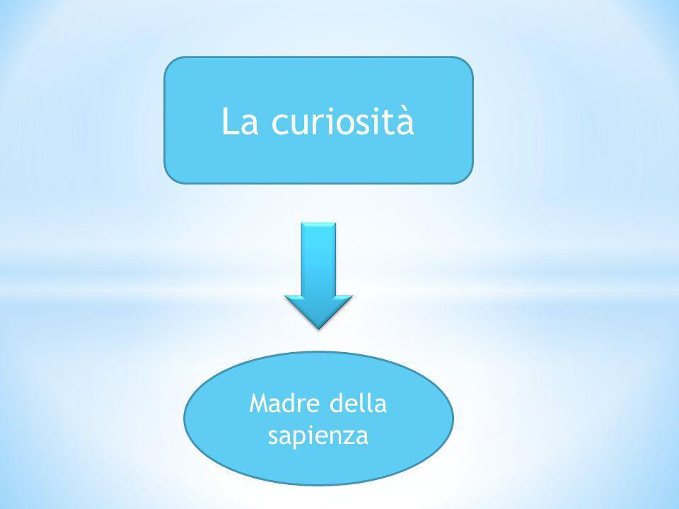 La curiosità Madre della sapienza