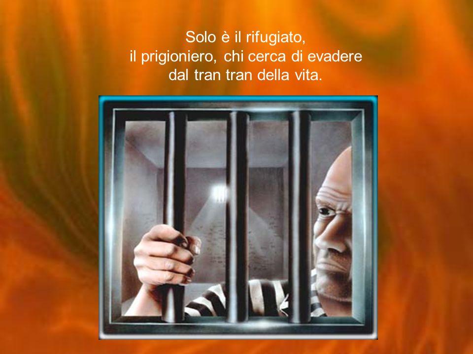 Solo è il rifugiato, il prigioniero, chi cerca di evadere dal tran tran della vita.