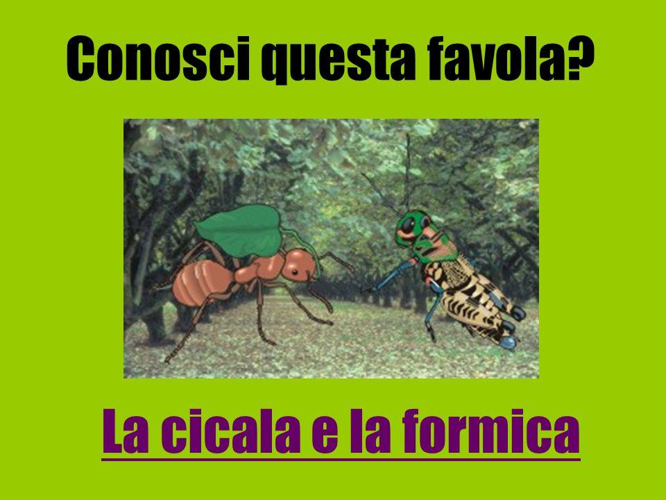 Conosci questa favola La cicala e la formica
