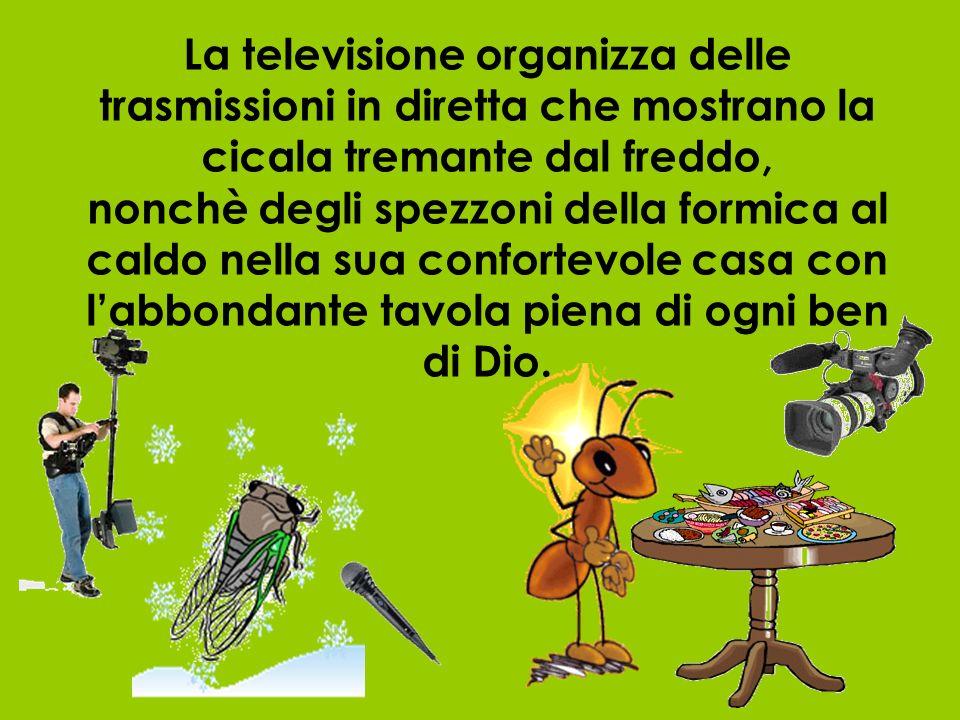 La televisione organizza delle trasmissioni in diretta che mostrano la cicala tremante dal freddo, nonchè degli spezzoni della formica al caldo nella sua confortevole casa con l'abbondante tavola piena di ogni ben di Dio.