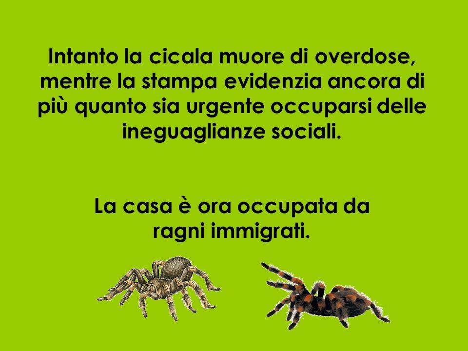 Intanto la cicala muore di overdose, mentre la stampa evidenzia ancora di più quanto sia urgente occuparsi delle ineguaglianze sociali.