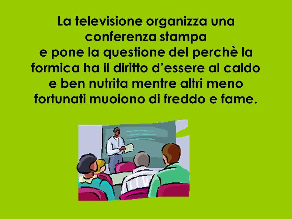 La televisione organizza una conferenza stampa e pone la questione del perchè la formica ha il diritto d'essere al caldo e ben nutrita mentre altri meno fortunati muoiono di freddo e fame.