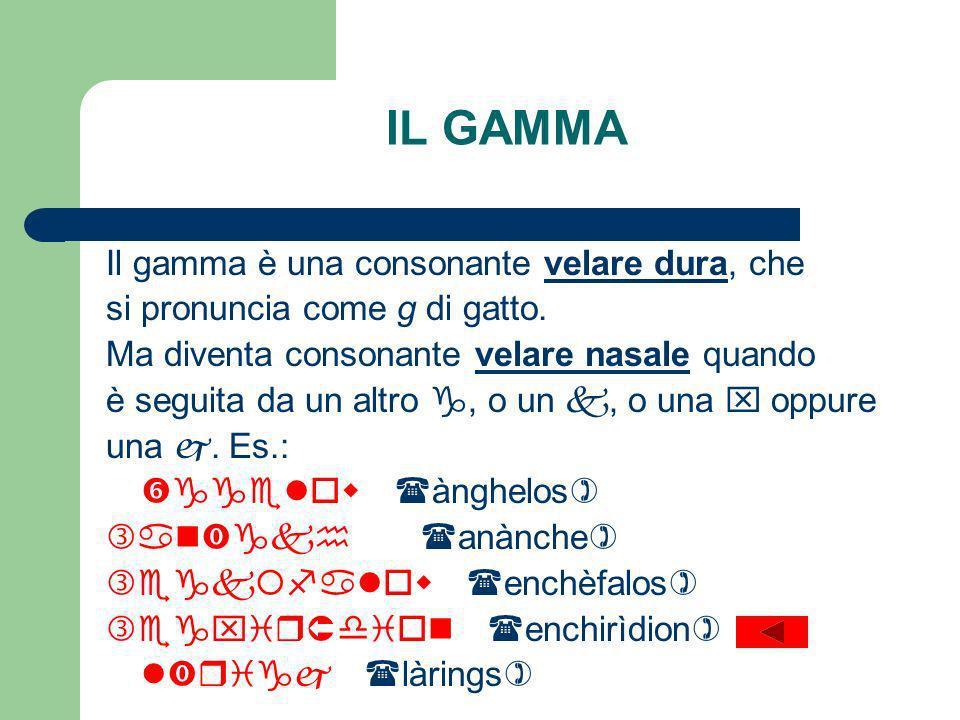 IL GAMMA Il gamma è una consonante velare dura, che