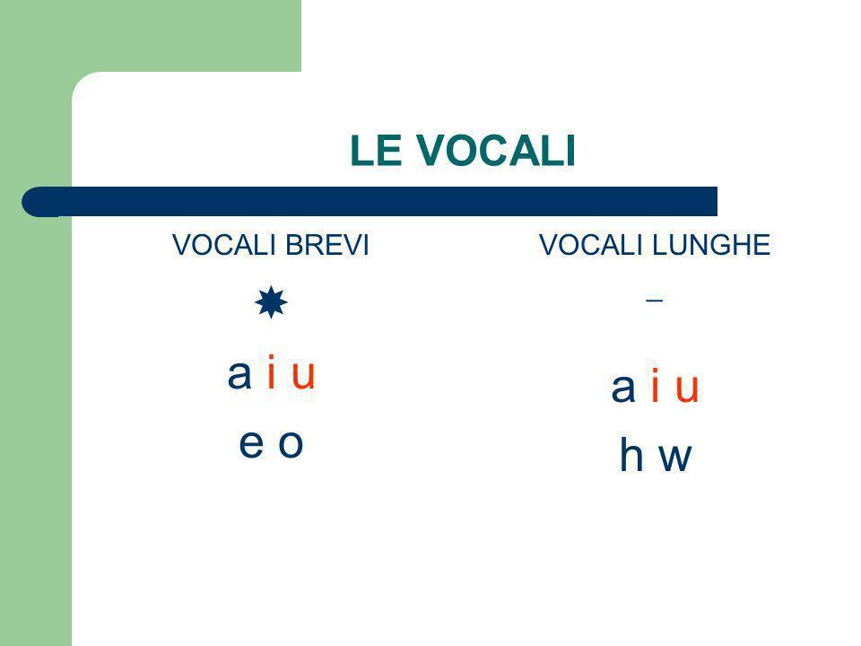 LE VOCALI VOCALI BREVI  a i u e o VOCALI LUNGHE _ a i u h w