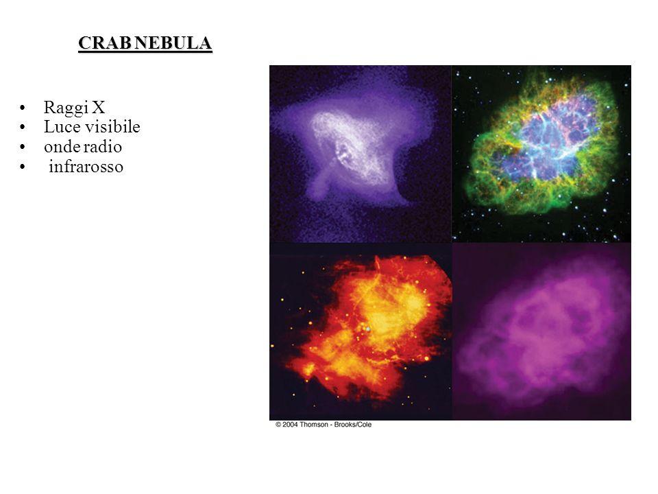 CRAB NEBULA Raggi X Luce visibile onde radio infrarosso