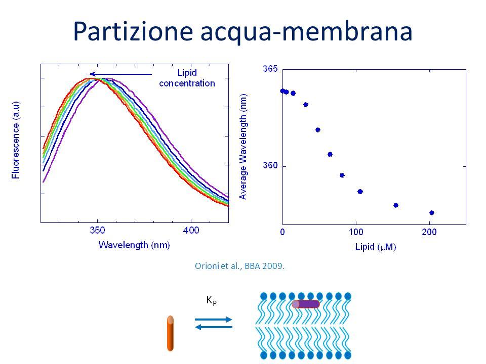 Partizione acqua-membrana