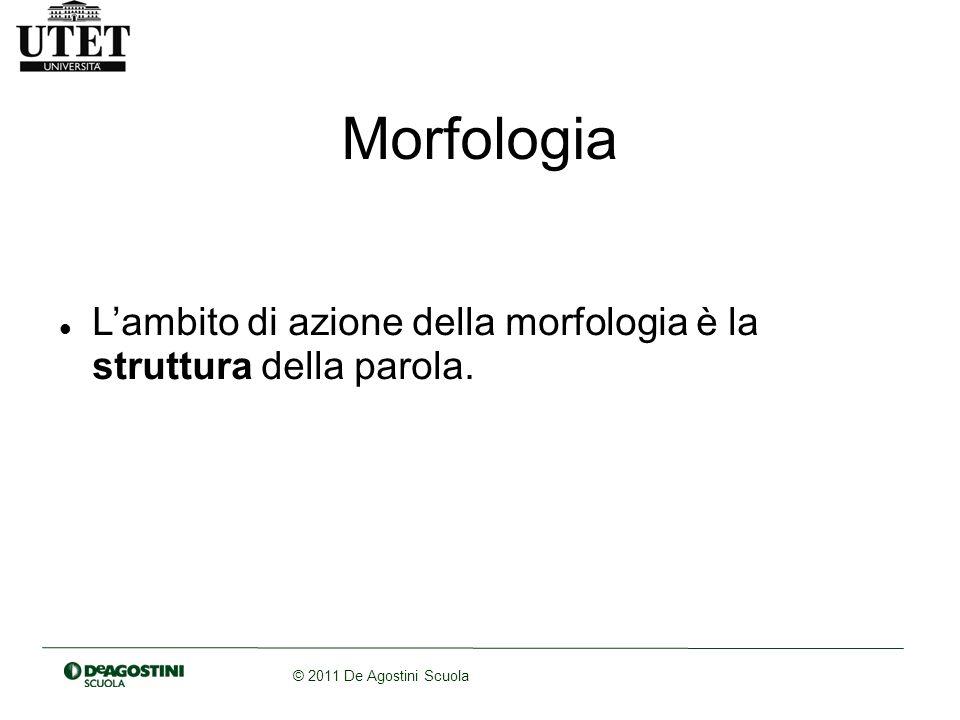 Morfologia L'ambito di azione della morfologia è la struttura della parola.