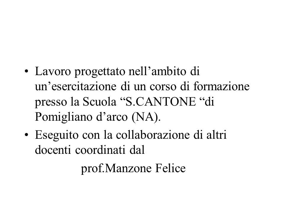 Lavoro progettato nell'ambito di un'esercitazione di un corso di formazione presso la Scuola S.CANTONE di Pomigliano d'arco (NA).