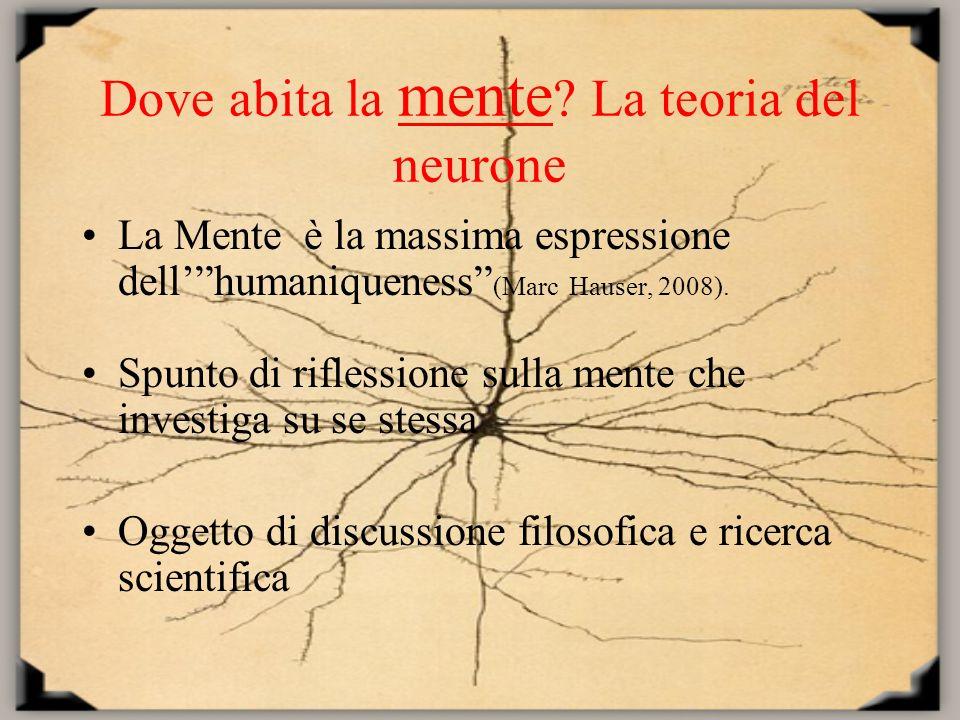 Dove abita la mente La teoria del neurone