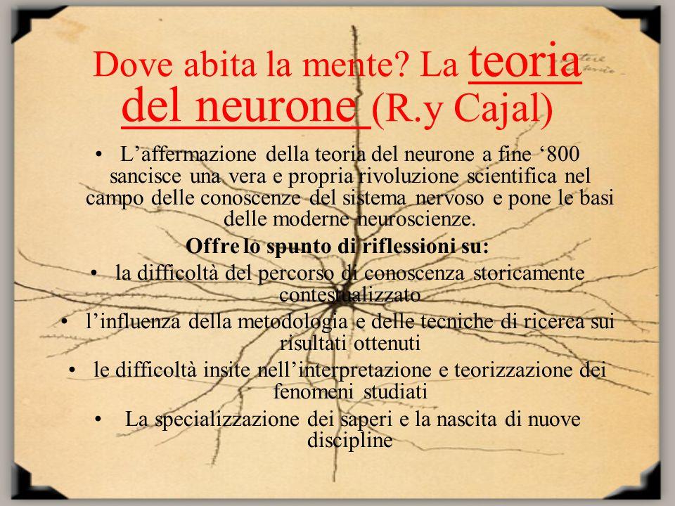 Dove abita la mente La teoria del neurone (R.y Cajal)