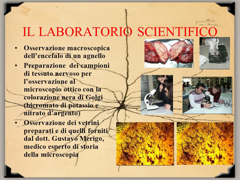IL LABORATORIO SCIENTIFICO
