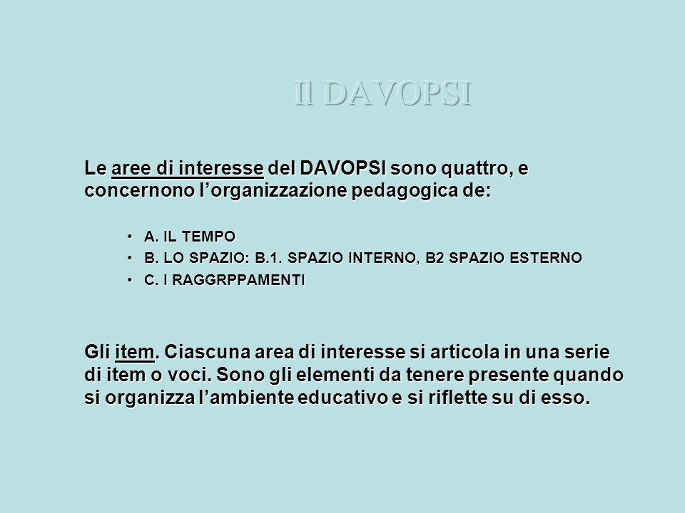 Il DAVOPSILe aree di interesse del DAVOPSI sono quattro, e concernono l'organizzazione pedagogica de: