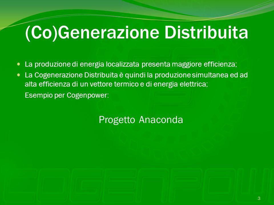 (Co)Generazione Distribuita