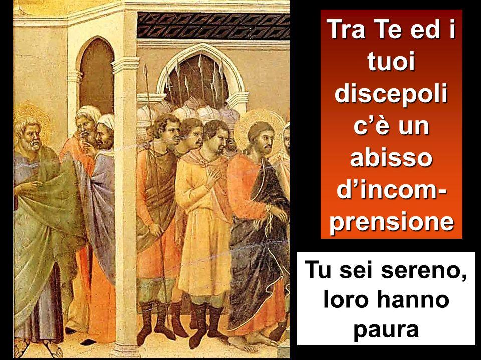Tra Te ed i tuoi discepoli c'è un abisso d'incom-prensione