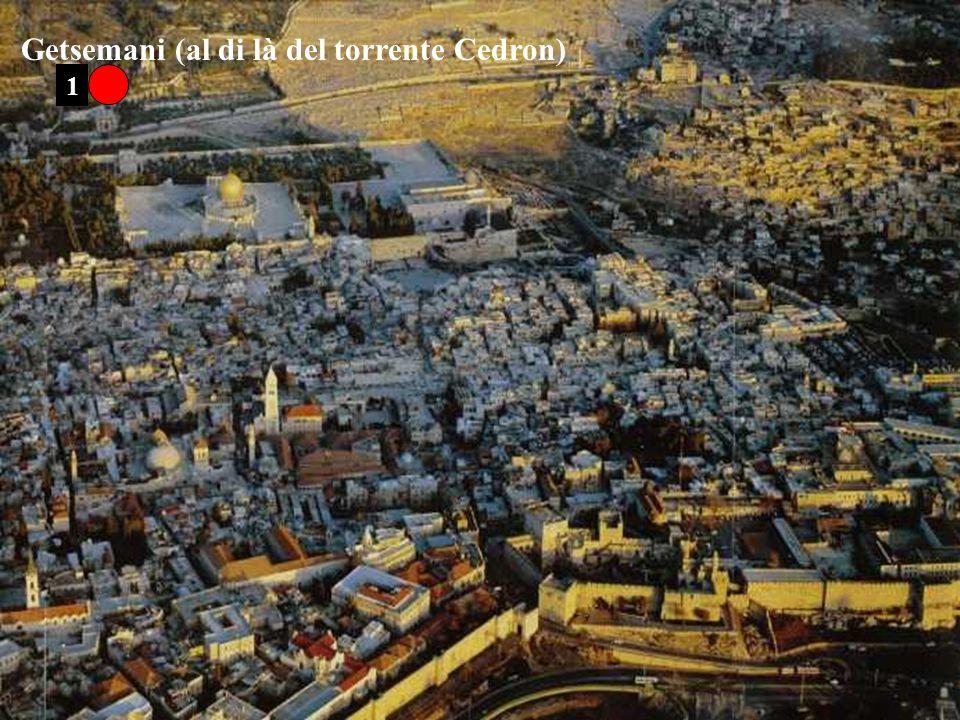 Getsemani (al di là del torrente Cedron)