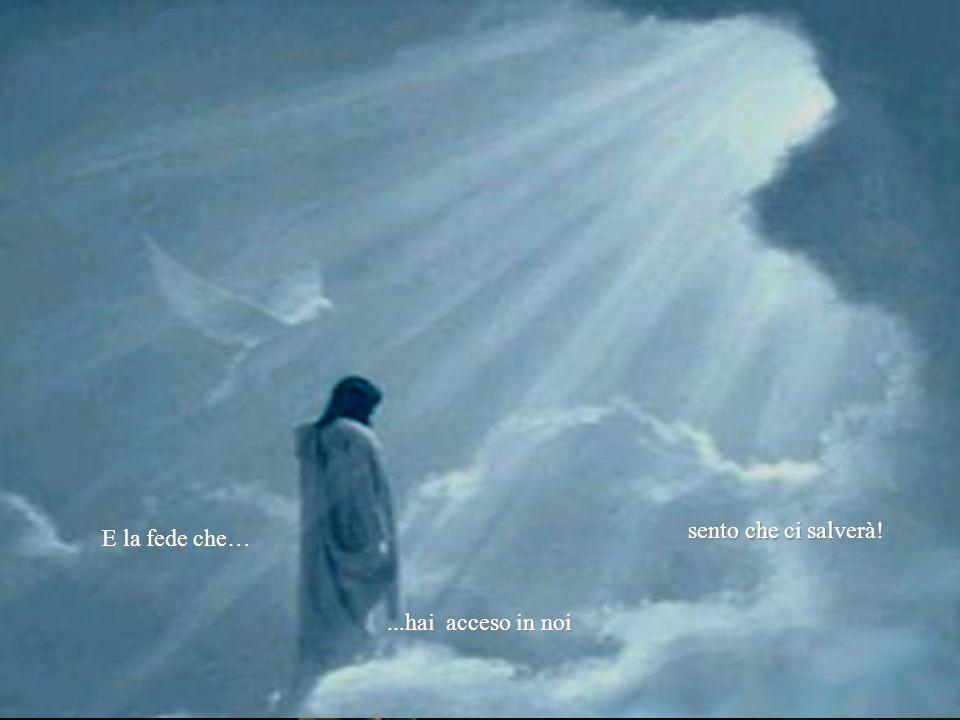 sento che ci salverà! E la fede che… ...hai acceso in noi