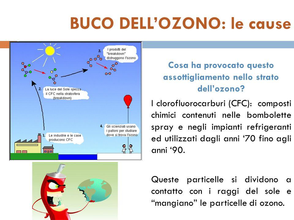 BUCO DELL'OZONO: le cause