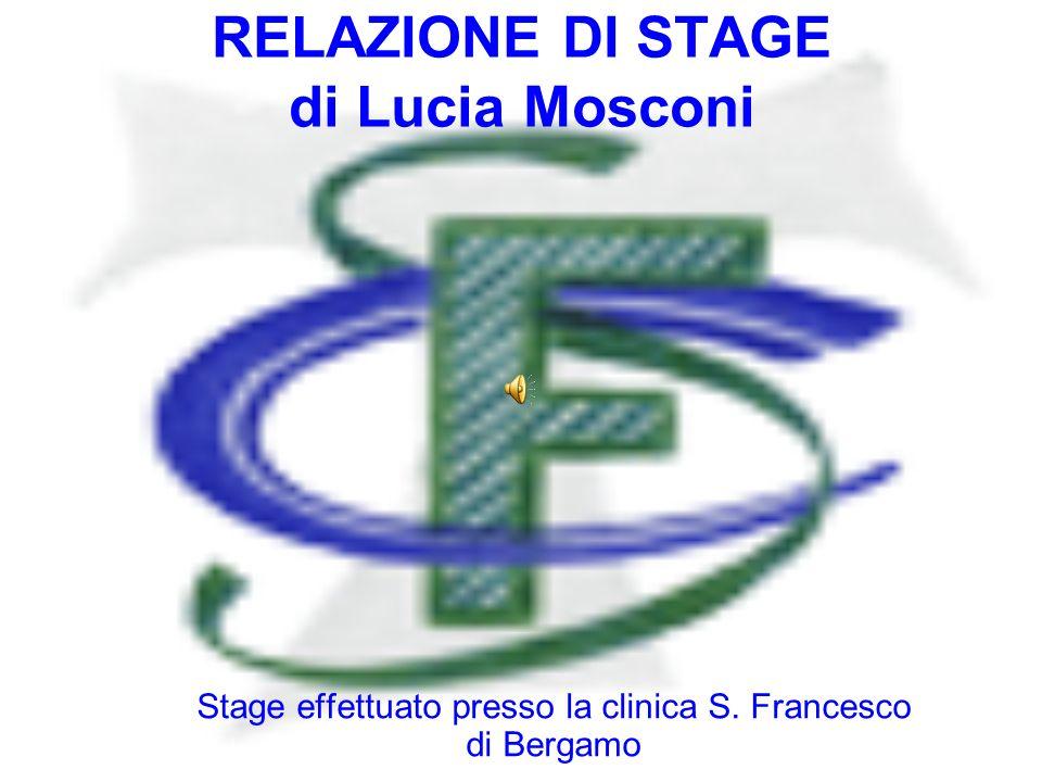 RELAZIONE DI STAGE di Lucia Mosconi