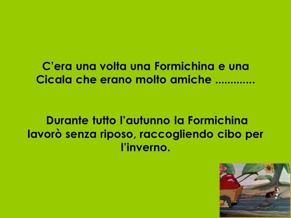 C'era una volta una Formichina e una Cicala che erano molto amiche