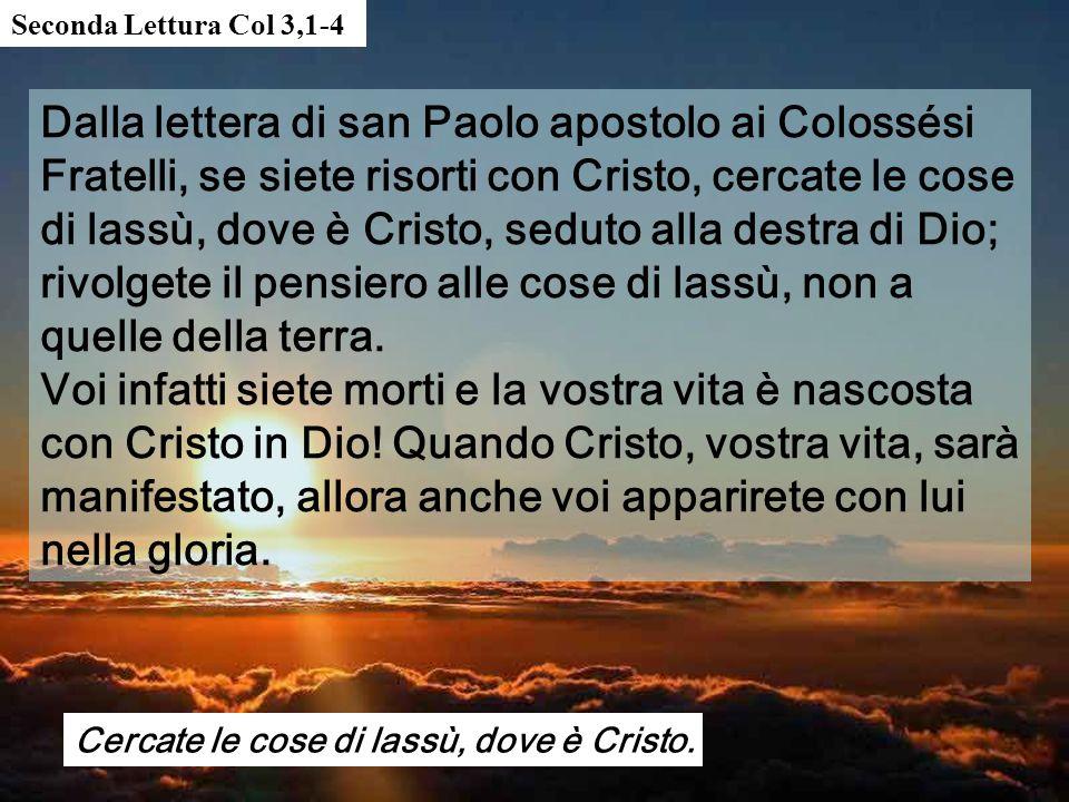 Seconda Lettura Col 3,1-4
