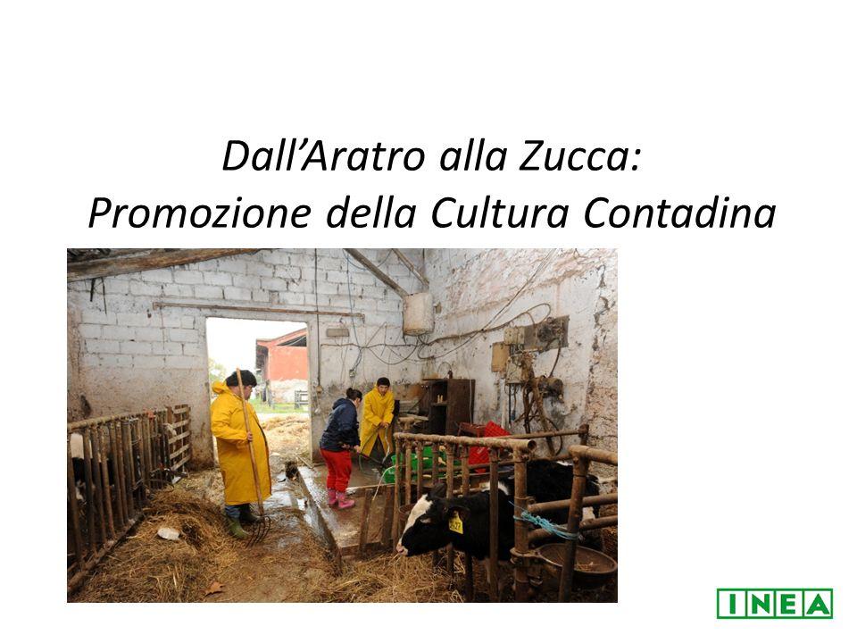 Dall'Aratro alla Zucca: Promozione della Cultura Contadina