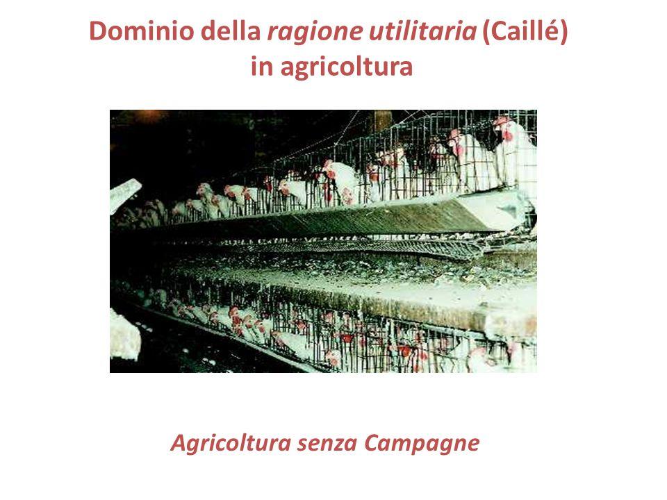 Dominio della ragione utilitaria (Caillé) in agricoltura