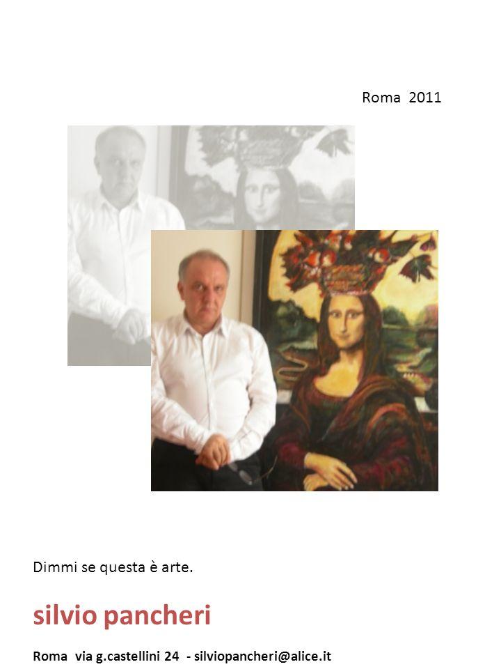 silvio pancheri Roma 2011 Dimmi se questa è arte.