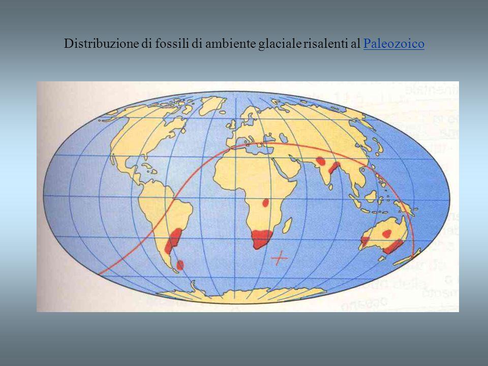 Distribuzione di fossili di ambiente glaciale risalenti al Paleozoico