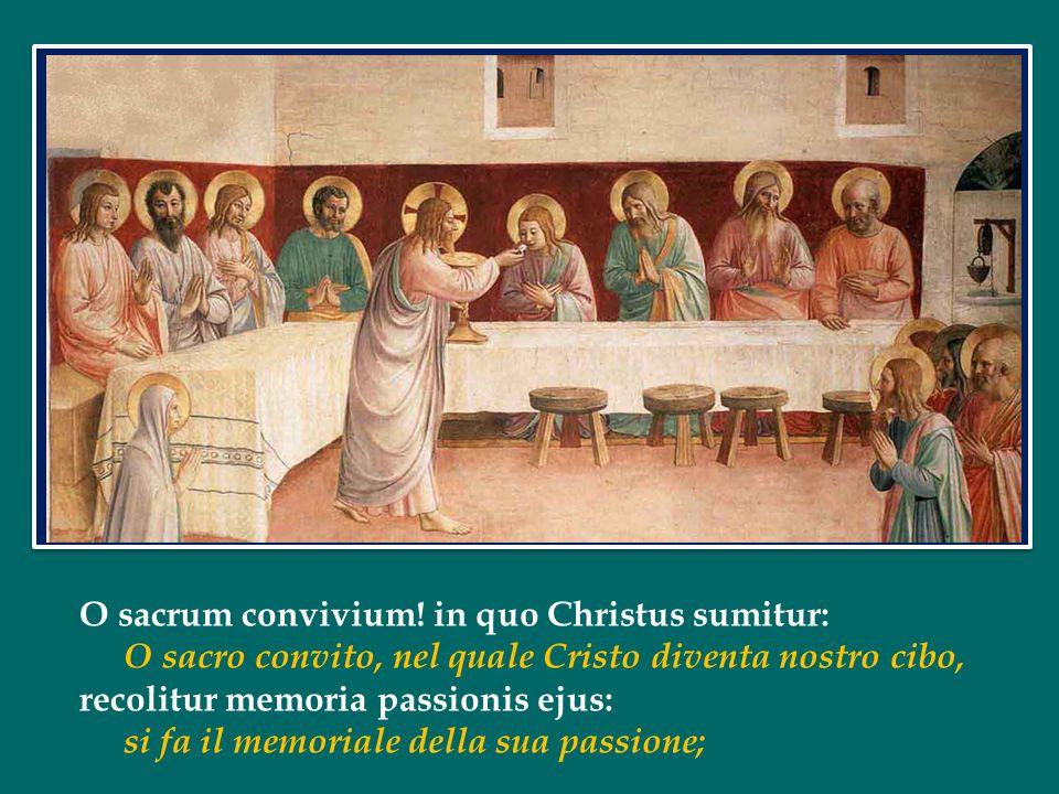 O sacrum convivium! in quo Christus sumitur: