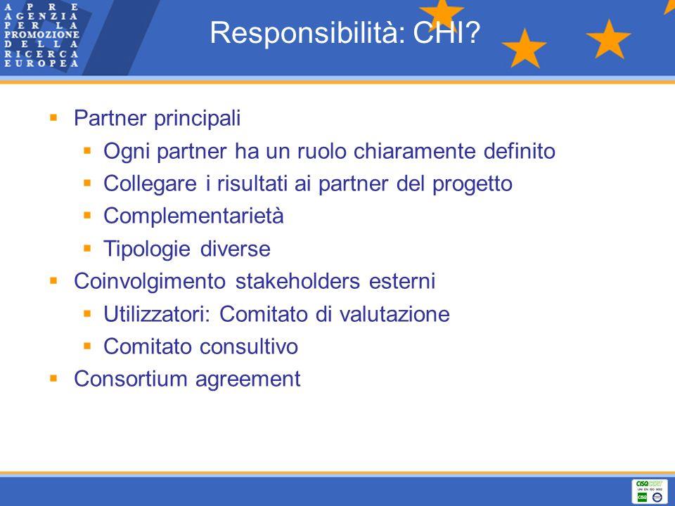 Responsibilità: CHI Partner principali