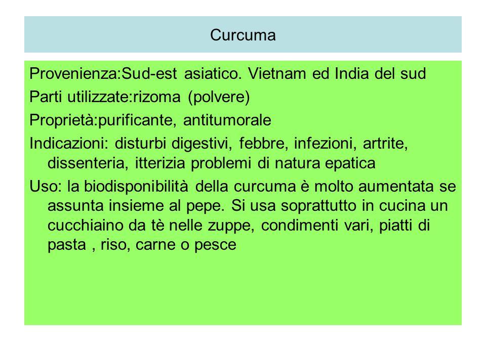 Curcuma Provenienza:Sud-est asiatico. Vietnam ed India del sud. Parti utilizzate:rizoma (polvere) Proprietà:purificante, antitumorale.