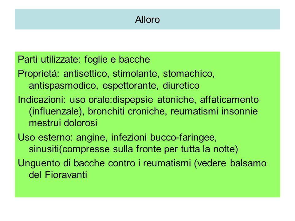 Alloro Parti utilizzate: foglie e bacche. Proprietà: antisettico, stimolante, stomachico, antispasmodico, espettorante, diuretico.