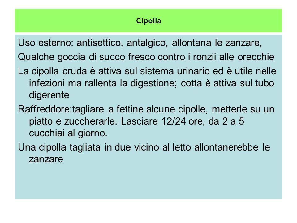 Uso esterno: antisettico, antalgico, allontana le zanzare,
