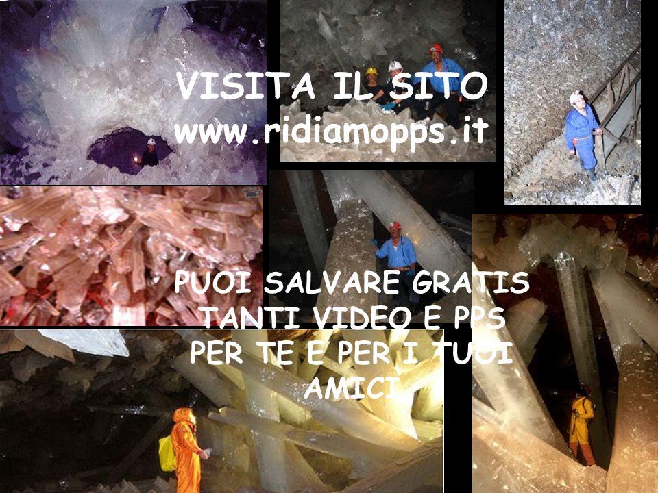 PUOI SALVARE GRATIS TANTI VIDEO E PPS
