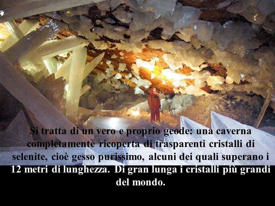 Si tratta di un vero e proprio geode: una caverna completamente ricoperta di trasparenti cristalli di selenite, cioè gesso purissimo, alcuni dei quali superano i 12 metri di lunghezza.